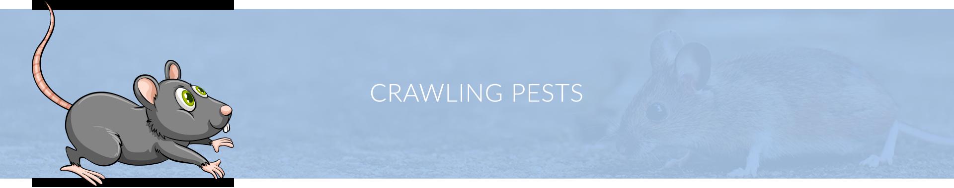 PestChem Crawling Pests Banner